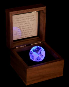 Fellini Arts-The World's Wholeness Lighted Thought Box
