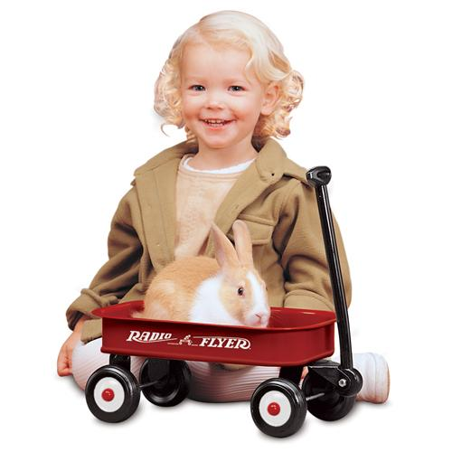 Radio Flyer - Little Red Wagon #5