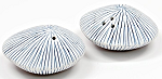 Sea Shell Salt & Pepper Shakers, White and Blue